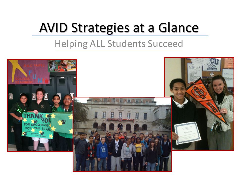 AVID Strategies at a Glance