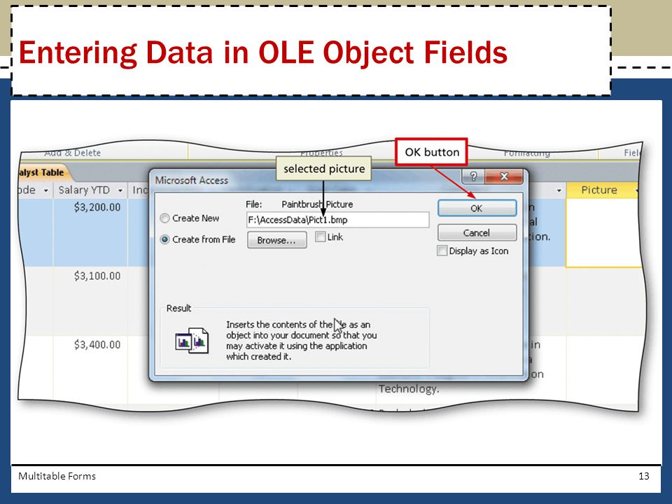 Entering Data in OLE Object Fields