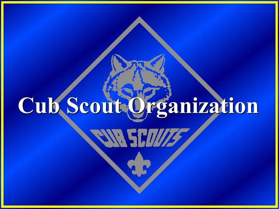 Cub Scout Organization