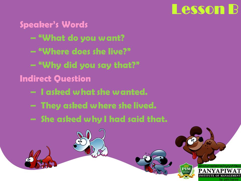 Lesson B Speaker's Words – What do you want – Where does she live