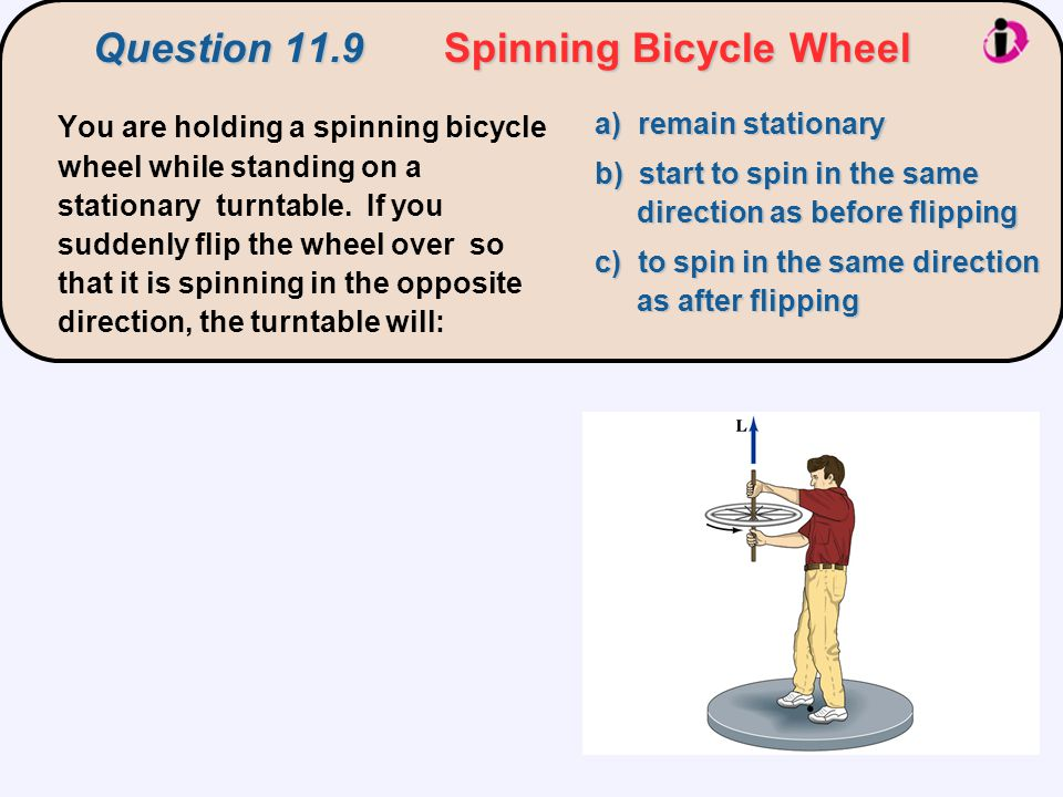 Question 11.9 Spinning Bicycle Wheel