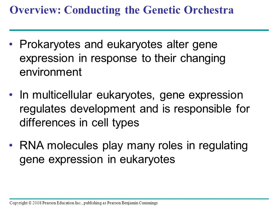 Overview: Conducting the Genetic Orchestra