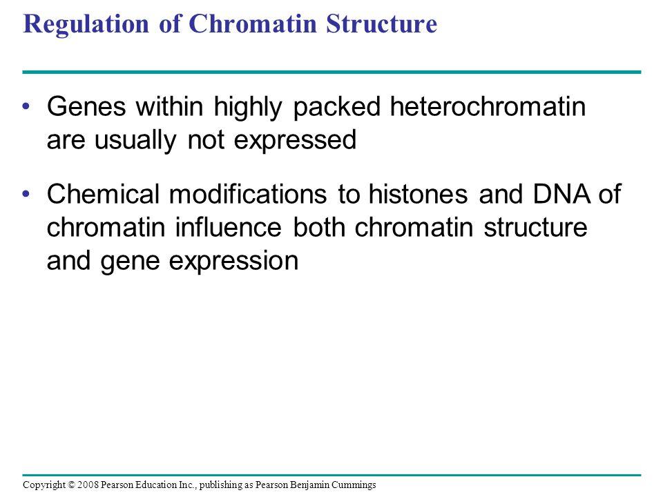 Regulation of Chromatin Structure