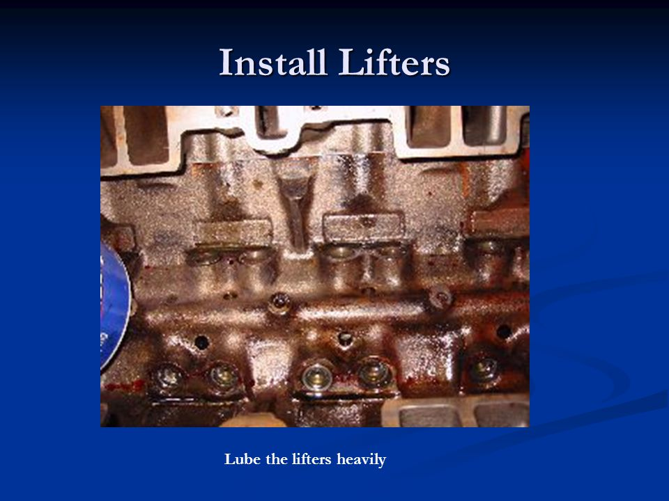 Install Lifters Lube the lifters heavily