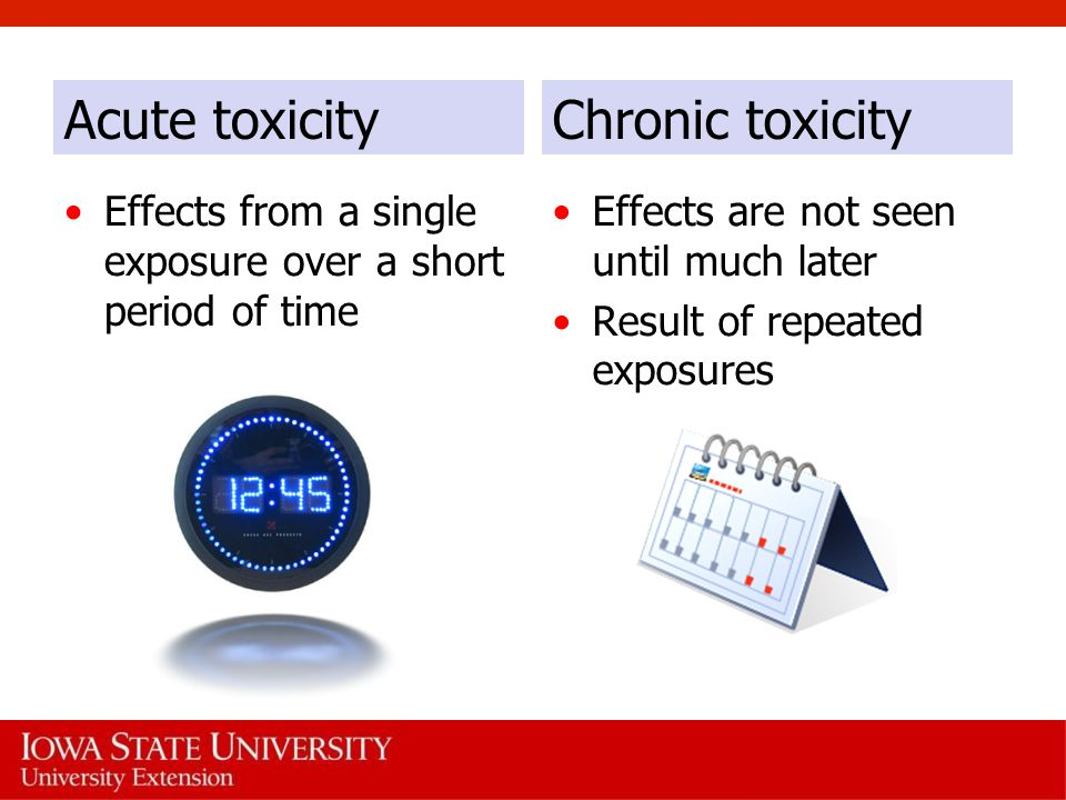 Acute toxicity Chronic toxicity
