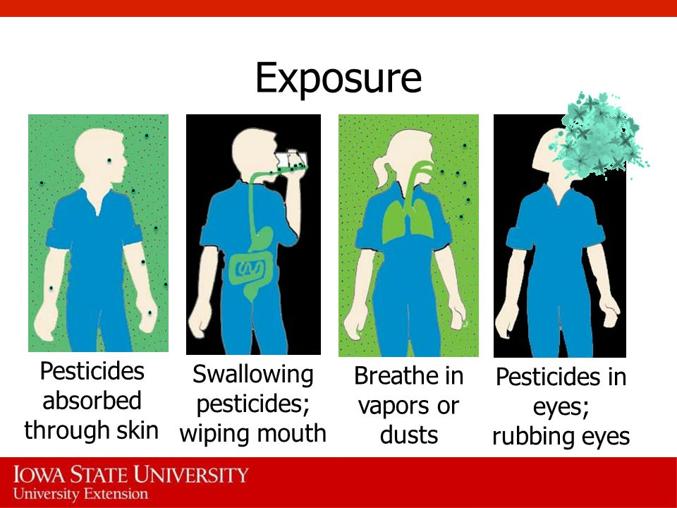 Exposure Pesticides absorbed through skin