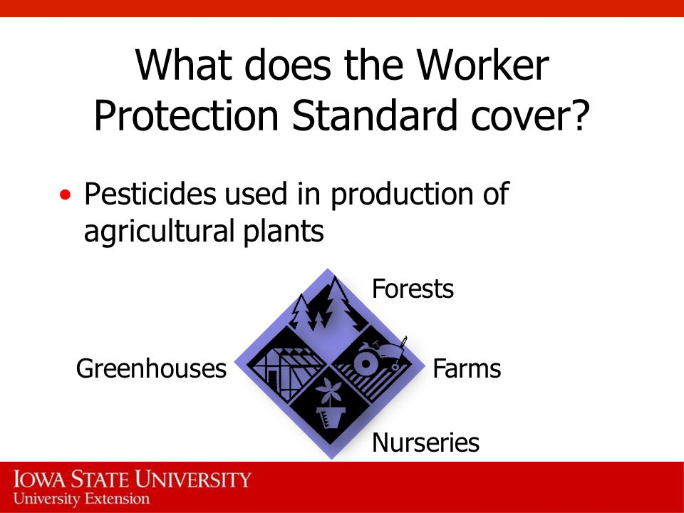 What does the Worker Protection Standard cover