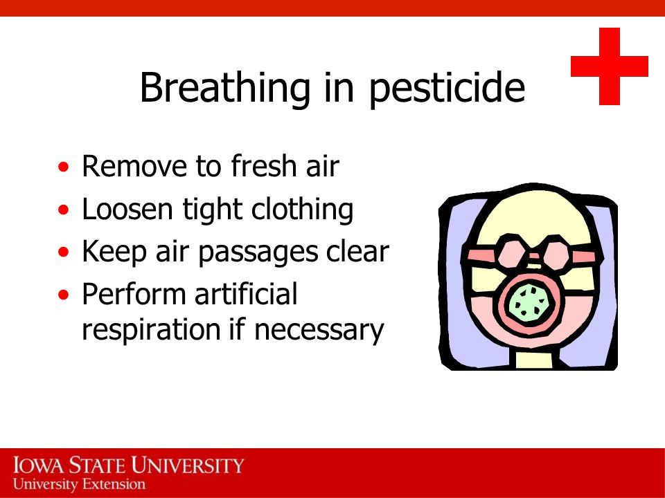 Breathing in pesticide