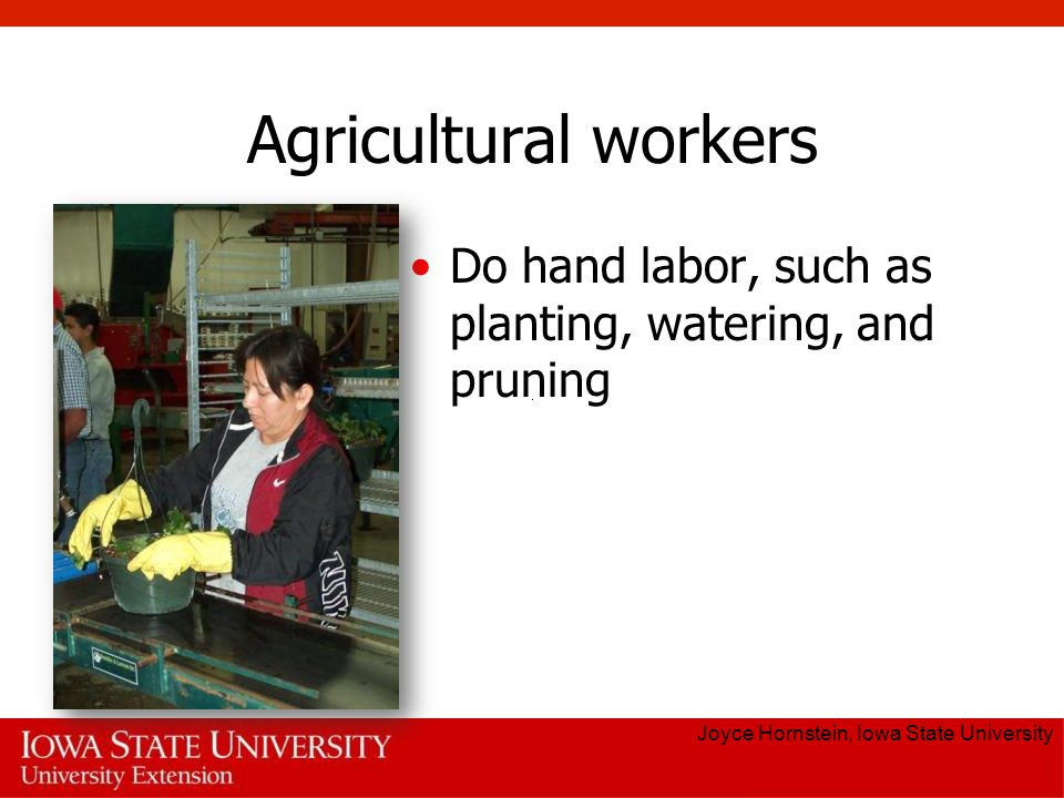 Agricultural workers Do hand labor, such as planting, watering, and pruning.