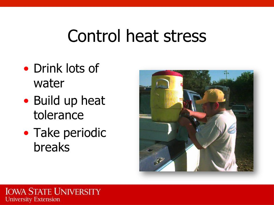Control heat stress Drink lots of water Build up heat tolerance
