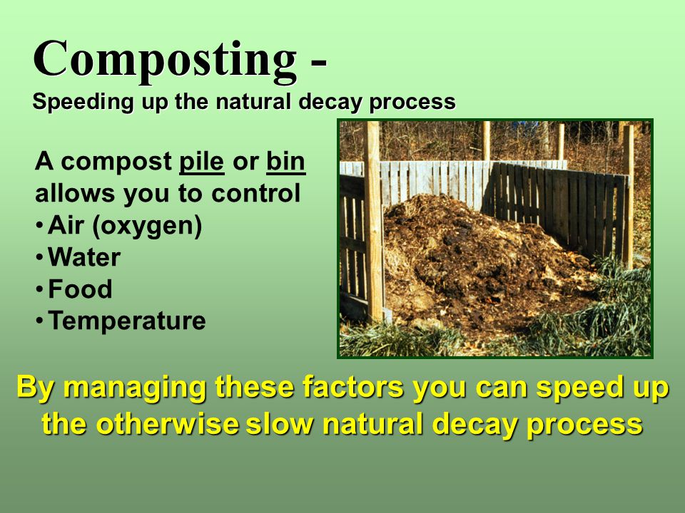 Composting - Speeding up the natural decay process. A compost pile or bin. allows you to control.