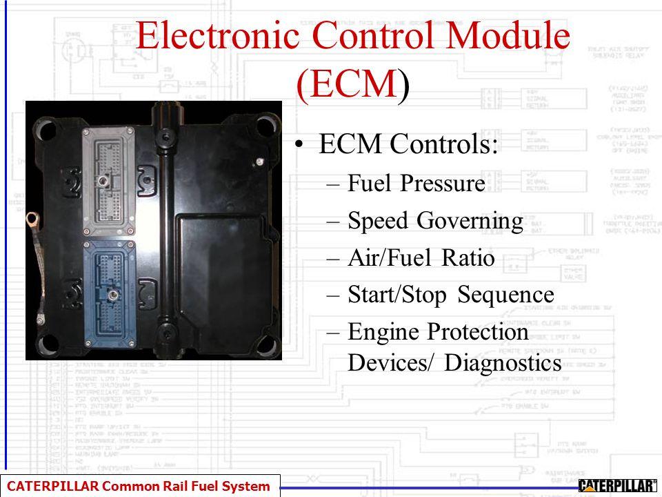 Electronic Control Module (ECM)
