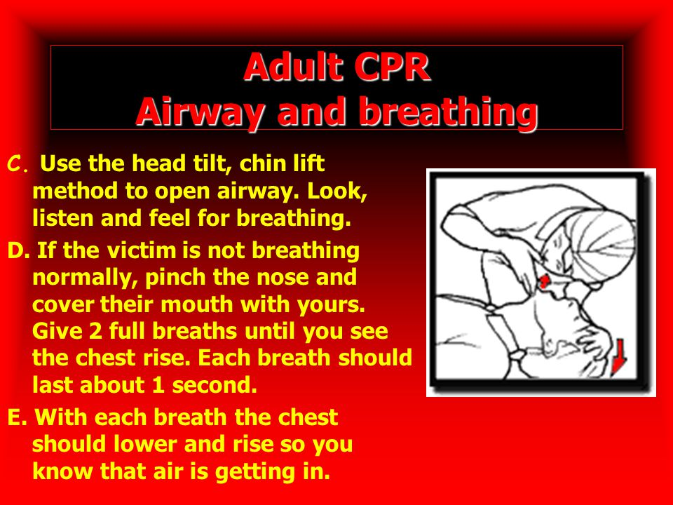 Adult CPR Airway and breathing