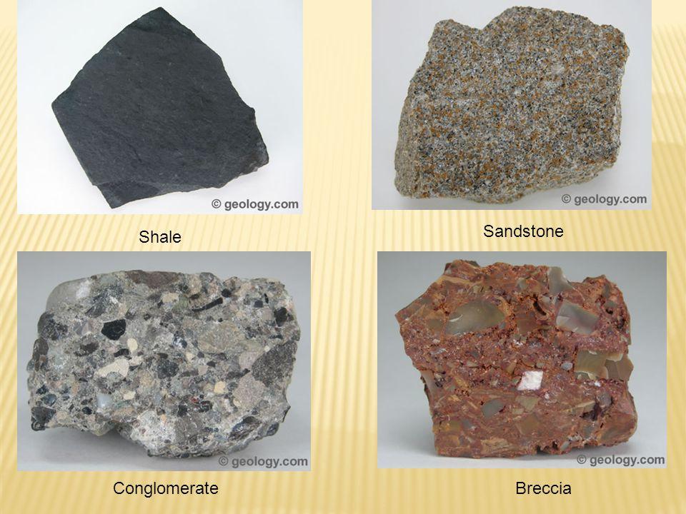 Sandstone Shale Conglomerate Breccia