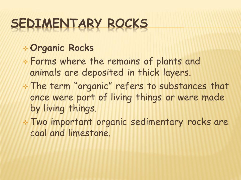 Sedimentary rocks Organic Rocks
