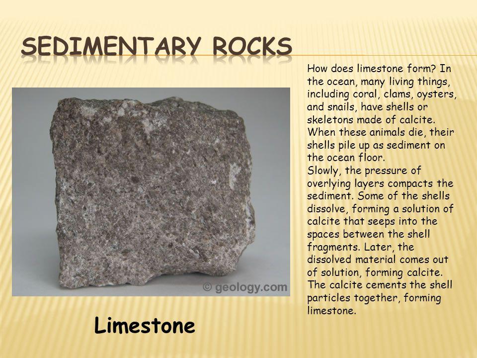 Sedimentary rocks Limestone