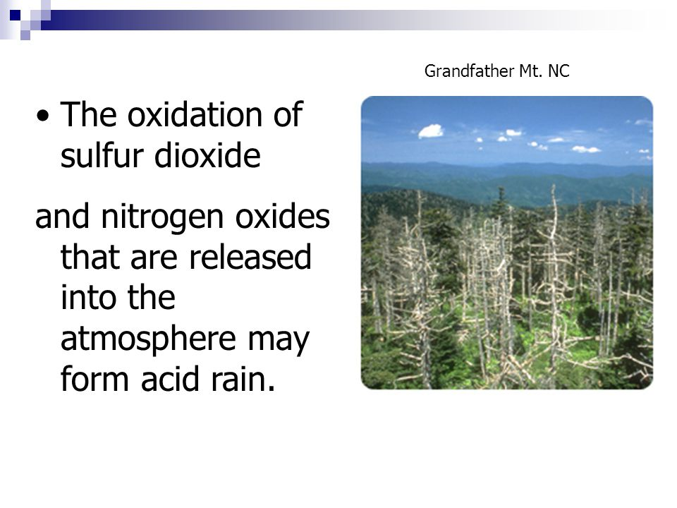 The oxidation of sulfur dioxide