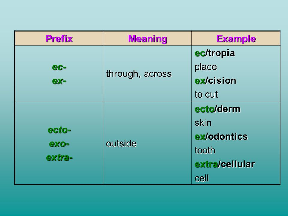 Prefix Meaning. Example. ec- ex- through, across. ec/tropia. place. ex/cision. to cut. ecto-