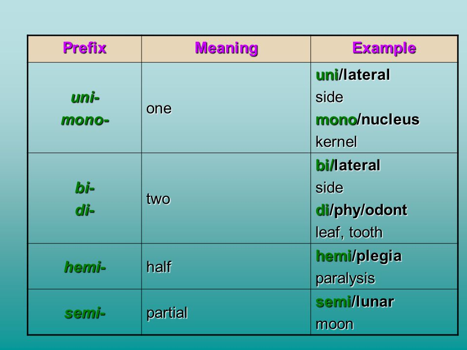 Prefix Meaning. Example. uni- mono- one. uni/lateral. side. mono/nucleus. kernel. bi- di-