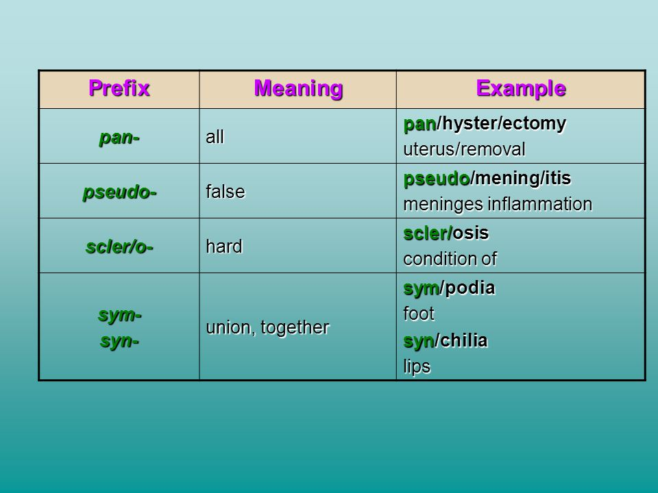 Prefix Meaning Example