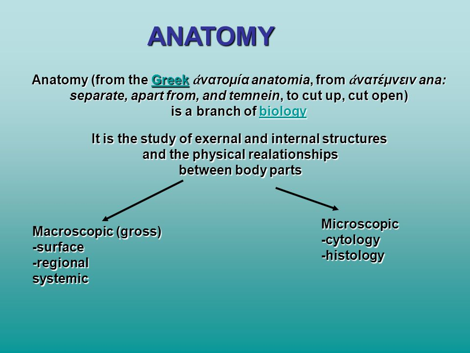 ANATOMY Anatomy (from the Greek ἀνατομία anatomia, from ἀνατέμνειν ana: separate, apart from, and temnein, to cut up, cut open)