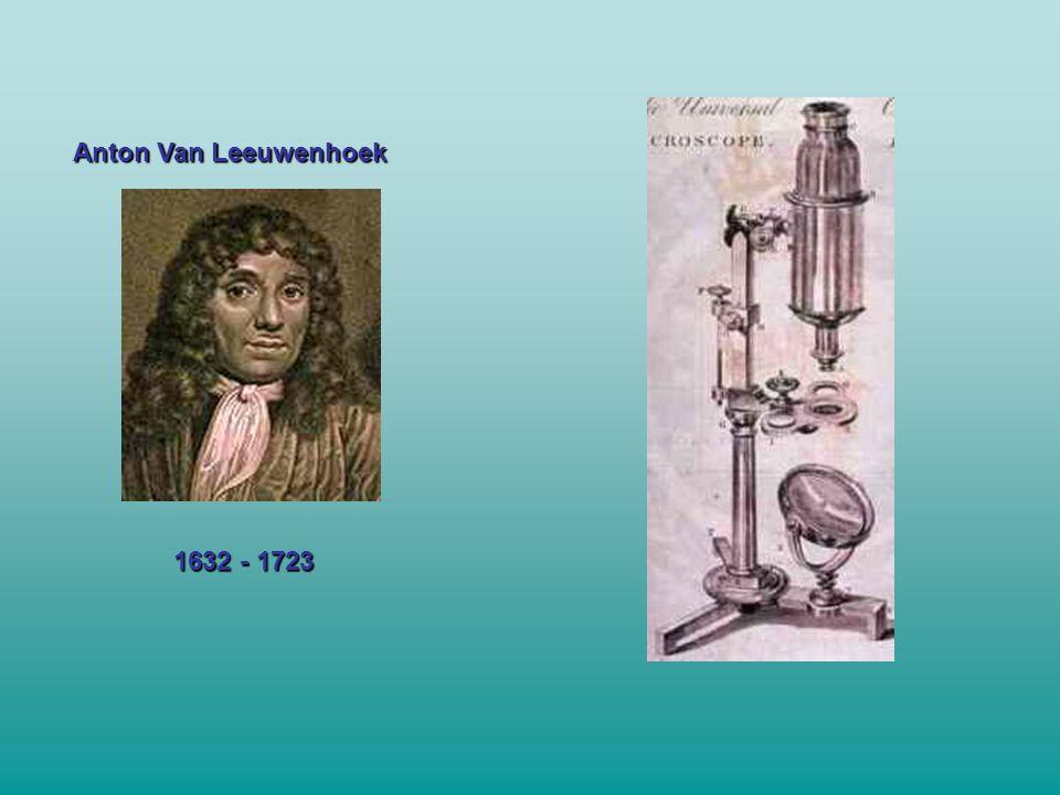 Anton Van Leeuwenhoek 1632 - 1723
