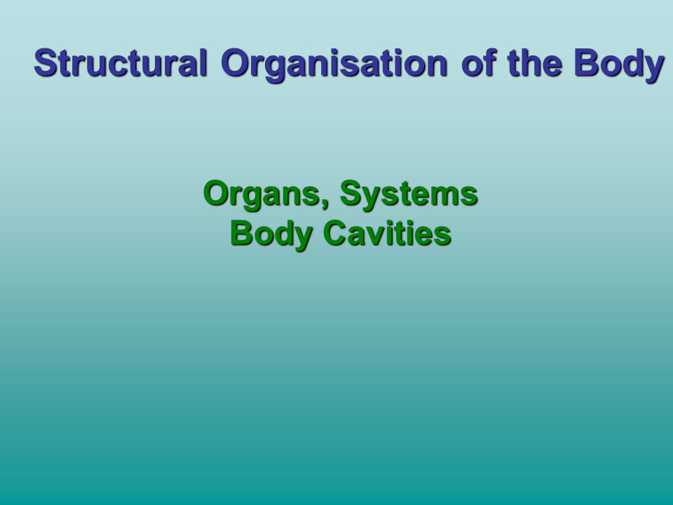 Structural Organisation of the Body