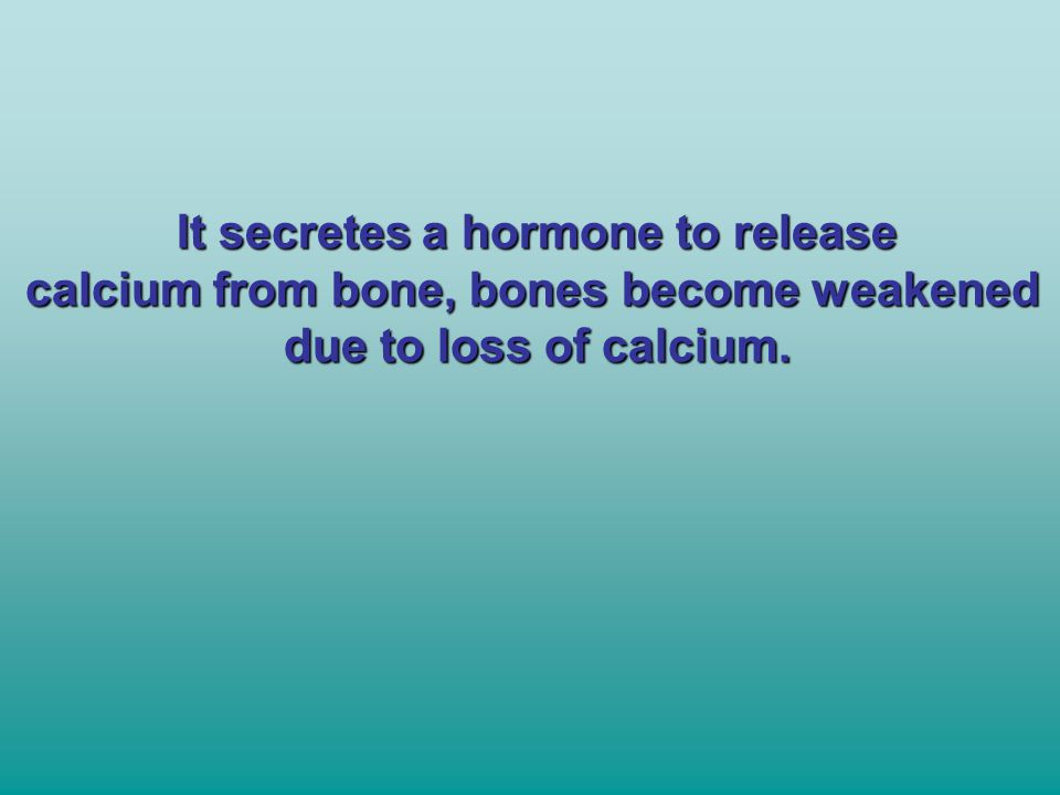 It secretes a hormone to release