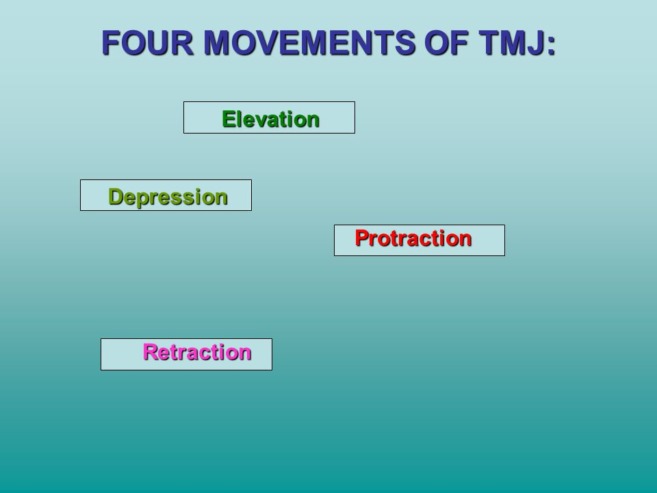 FOUR MOVEMENTS OF TMJ: Elevation Depression Protraction Retraction