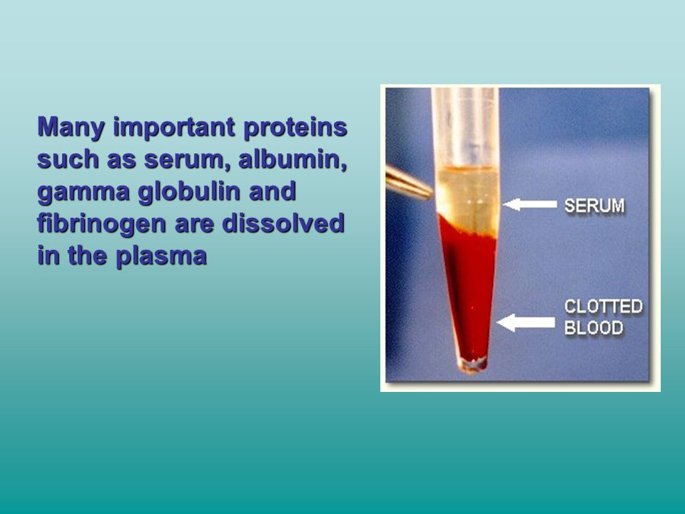 Many important proteins