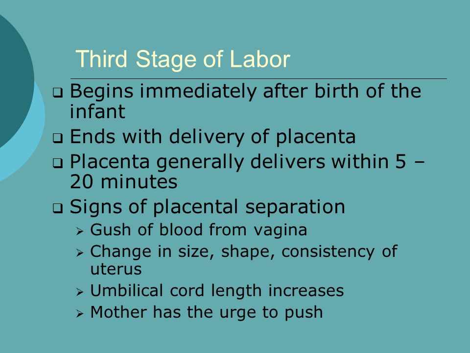 Third Stage of Labor Begins immediately after birth of the infant