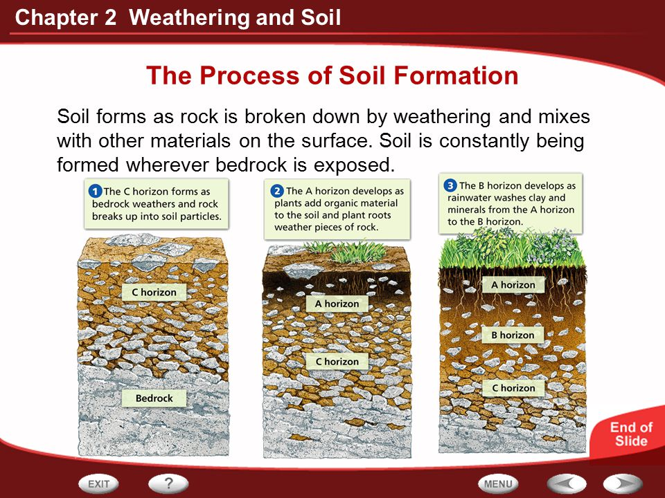 The Process of Soil Formation