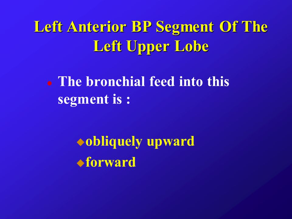 Left Anterior BP Segment Of The Left Upper Lobe