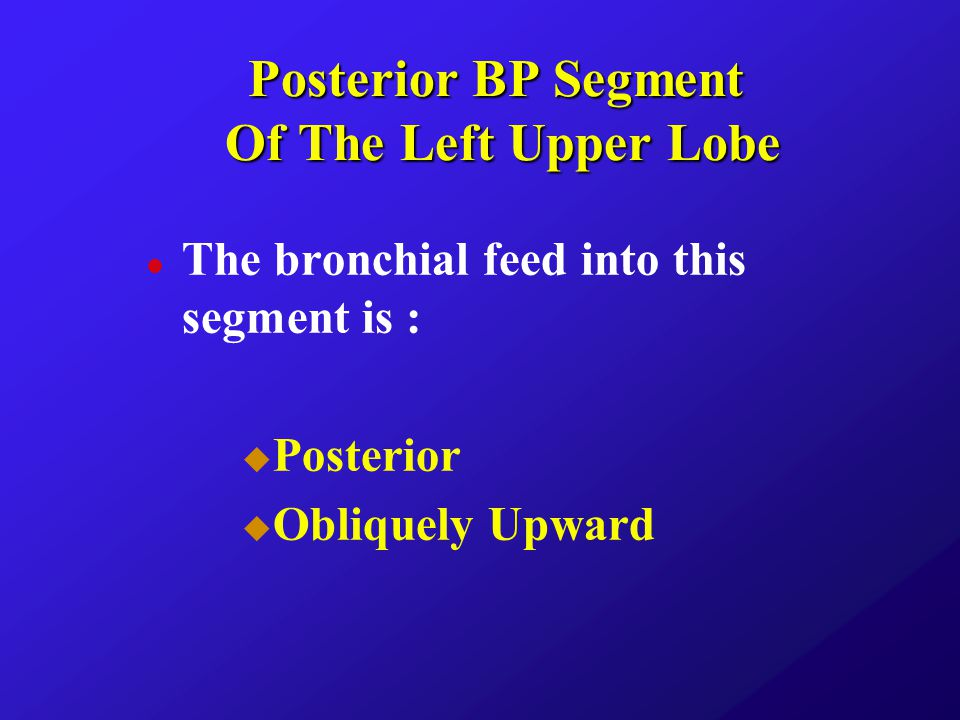 Posterior BP Segment Of The Left Upper Lobe