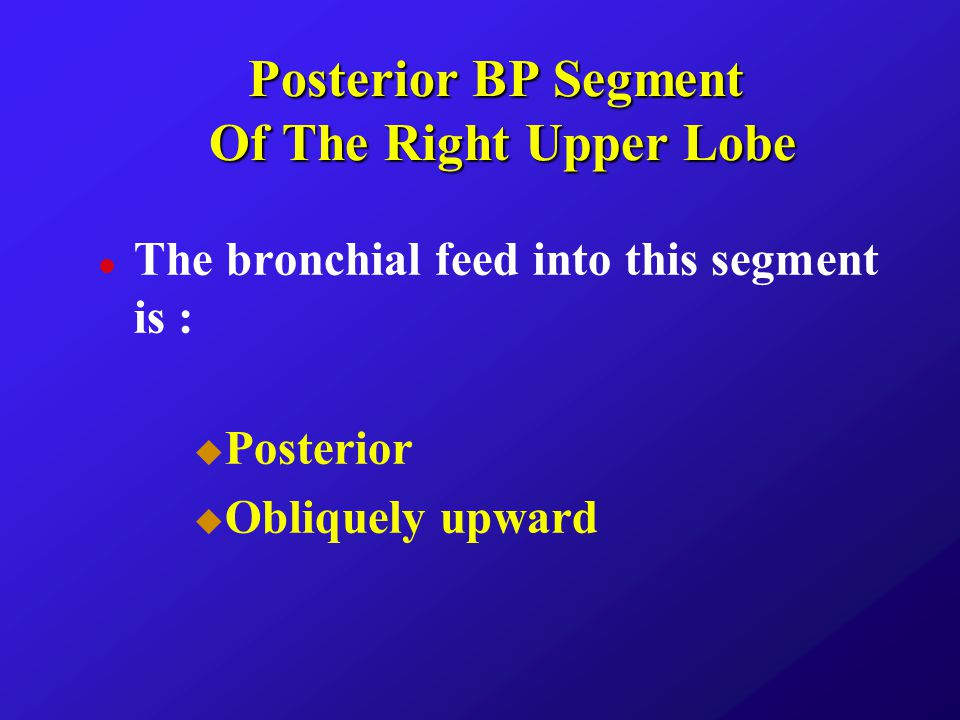 Posterior BP Segment Of The Right Upper Lobe