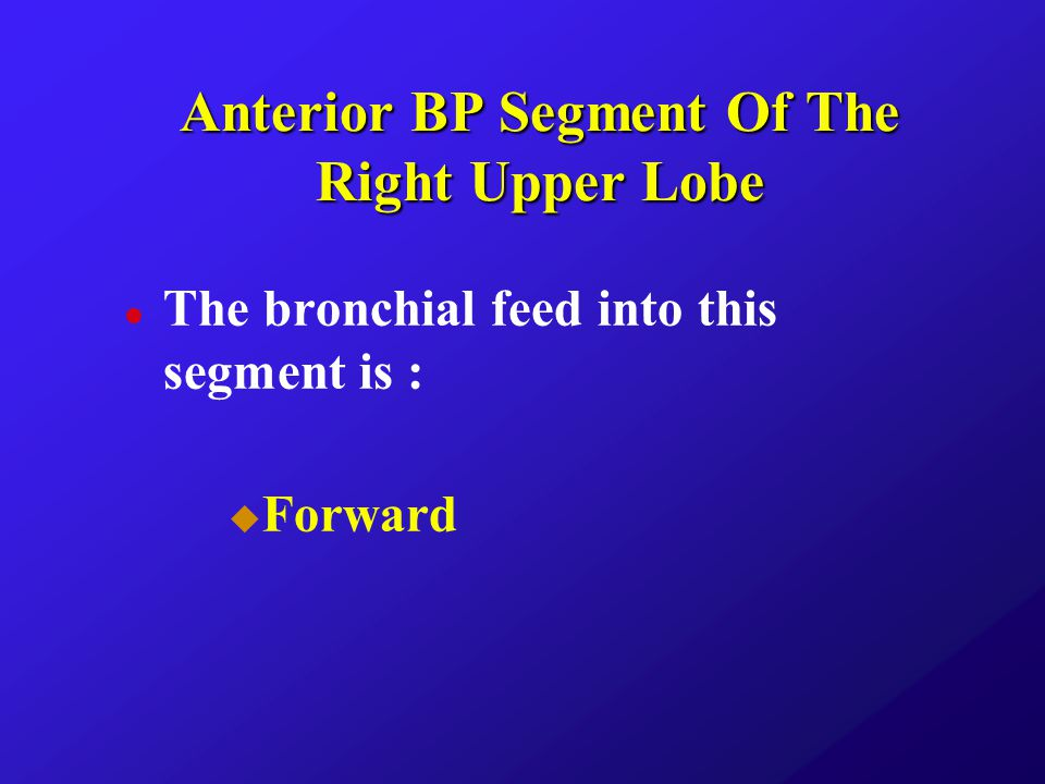 Anterior BP Segment Of The Right Upper Lobe