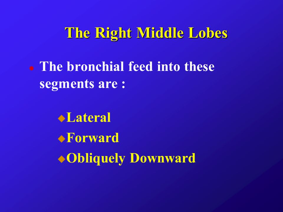 The Right Middle Lobes The bronchial feed into these segments are :