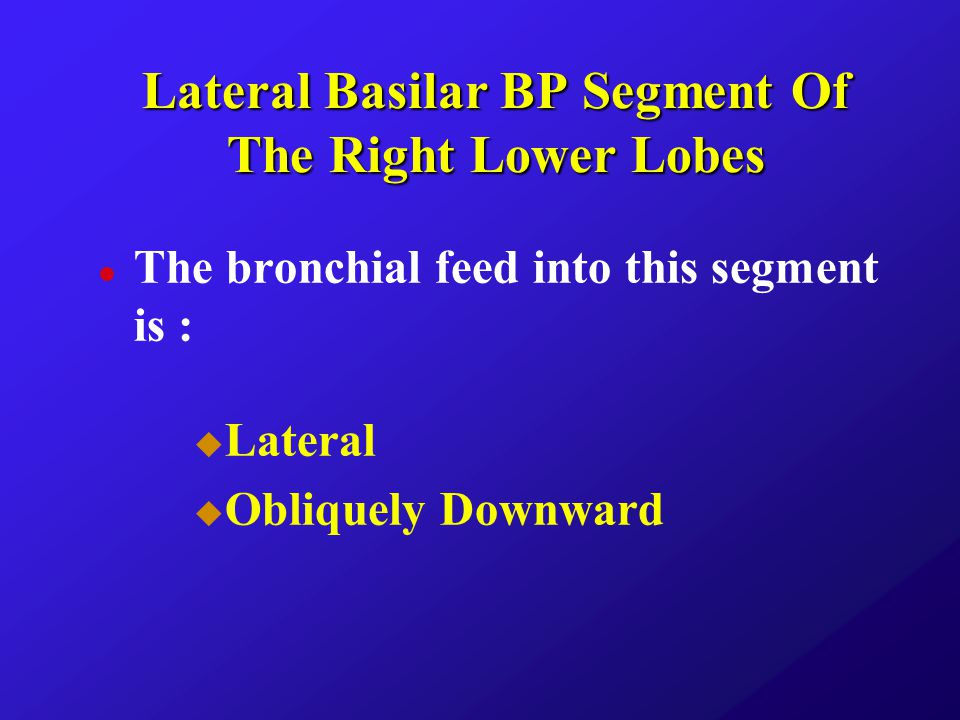 Lateral Basilar BP Segment Of The Right Lower Lobes