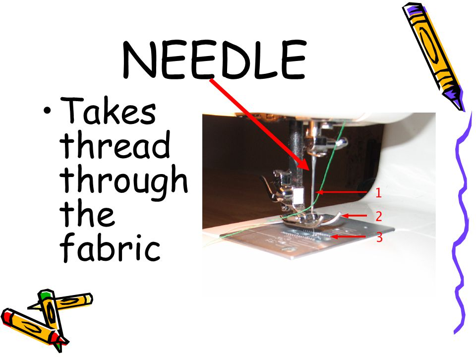 NEEDLE Takes thread through the fabric