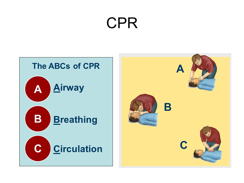 CPR The ABCs of CPR A A B C Airway Breathing Circulation B C