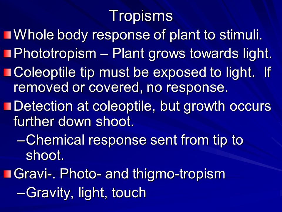 Tropisms Whole body response of plant to stimuli.