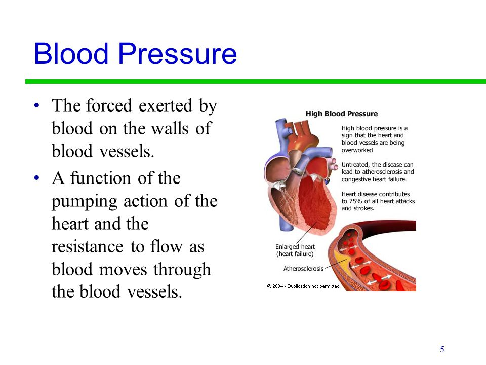 Blood Pressure The forced exerted by blood on the walls of blood vessels.