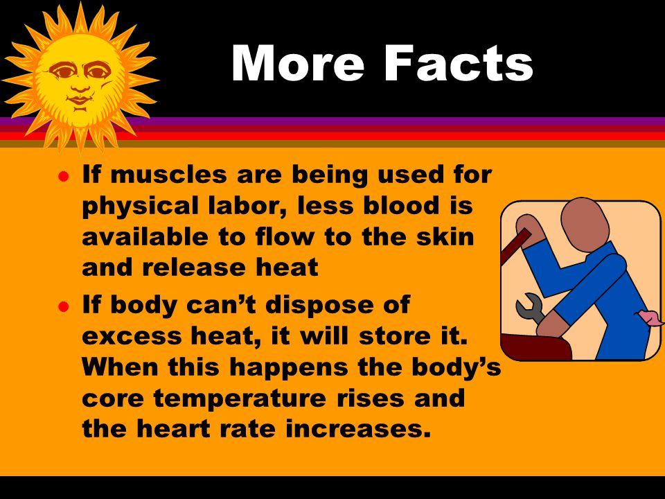 More Facts If muscles are being used for physical labor, less blood is available to flow to the skin and release heat.