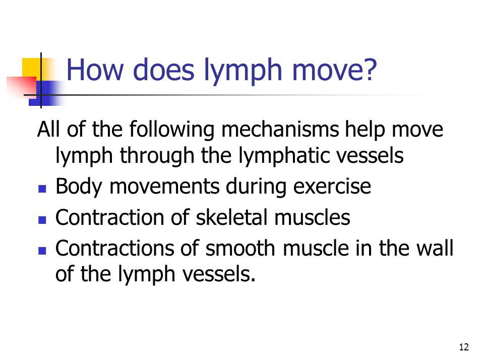 How does lymph move All of the following mechanisms help move lymph through the lymphatic vessels.