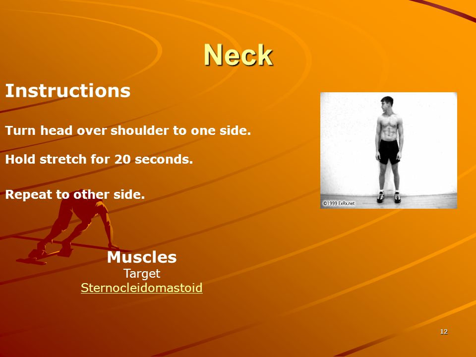 Neck Instructions Muscles Turn head over shoulder to one side.