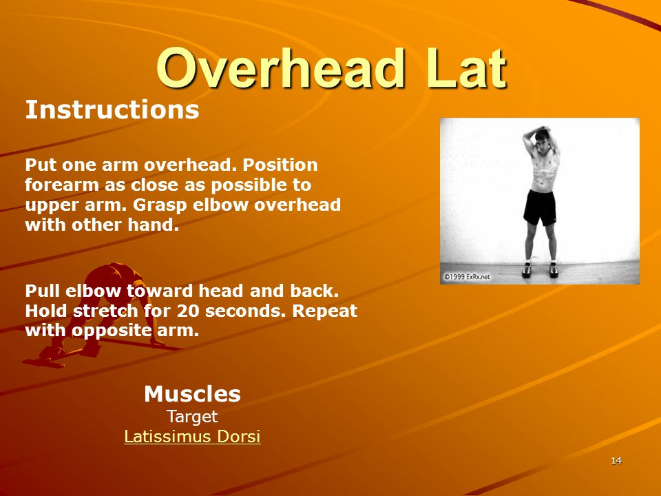 Overhead Lat Instructions Muscles