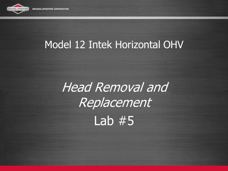 Model 12 Intek Horizontal OHV