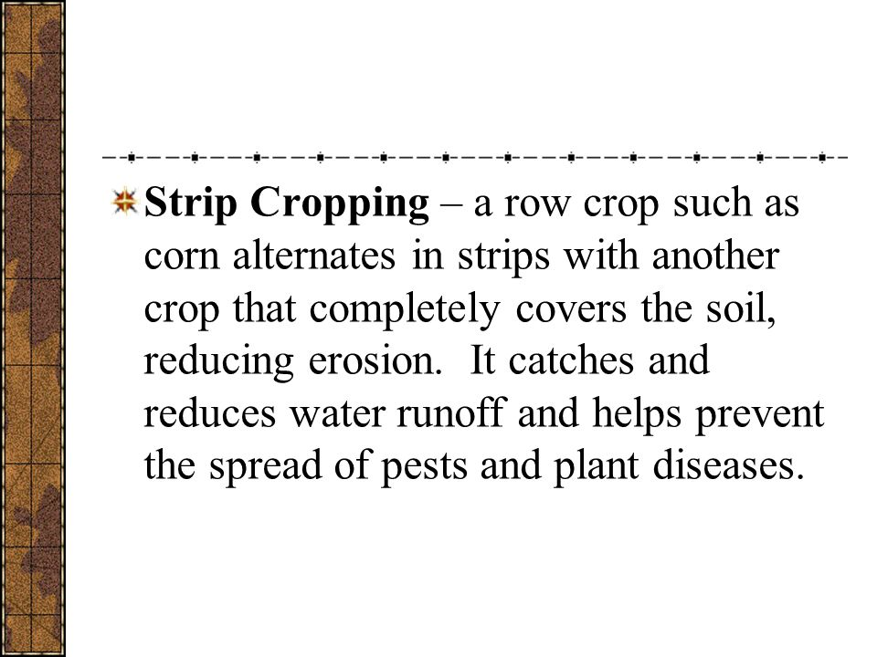 Strip Cropping – a row crop such as corn alternates in strips with another crop that completely covers the soil, reducing erosion.