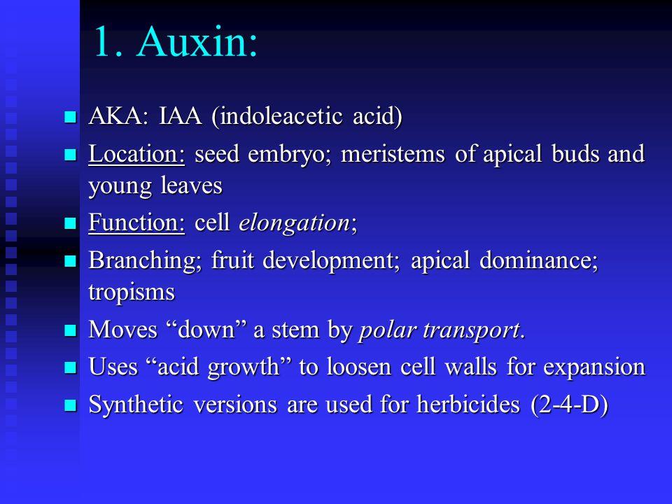 1. Auxin: AKA: IAA (indoleacetic acid)