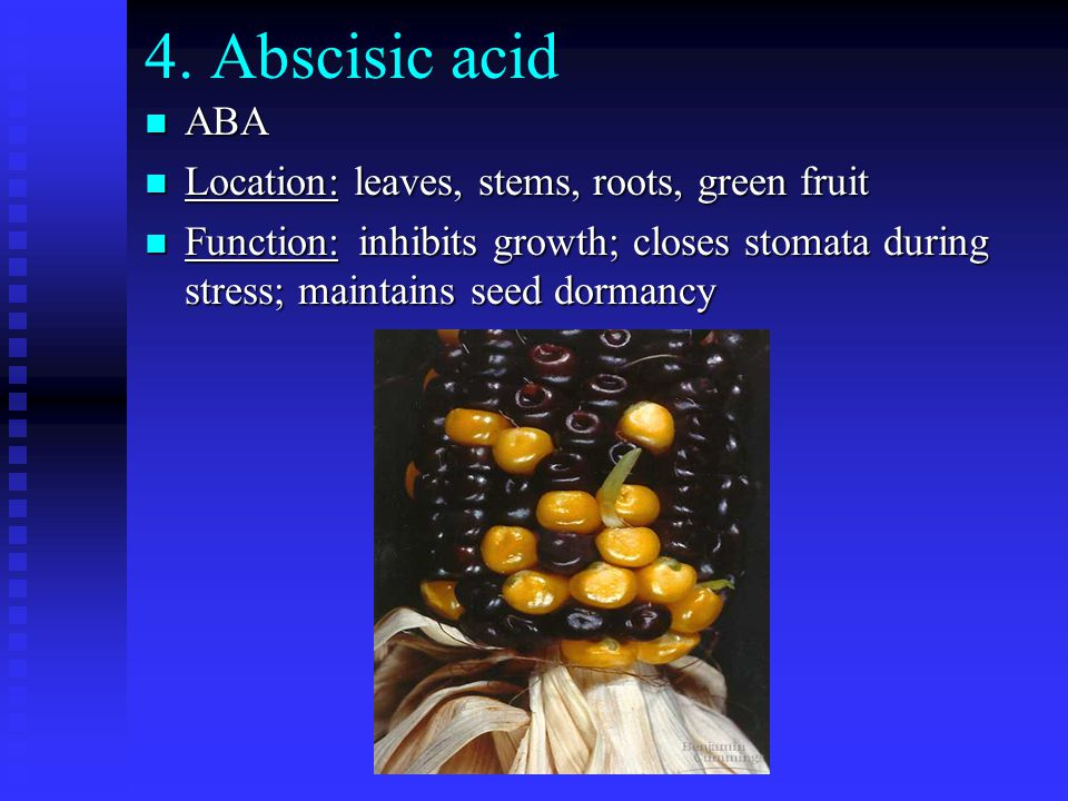 4. Abscisic acid ABA Location: leaves, stems, roots, green fruit
